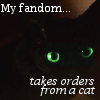 "practicalcat: A picture of a green-eyed black cat with the caption ""My fandom takes orders from a cat"" (Redemption of Althalus)"