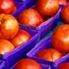 keryx: (tomato)