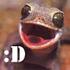 "genarti: Small lizard (possibly a gecko?) with open mouth and text "":D"". ([misc] squeak of GLEE)"