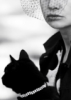 dziga: (cat)