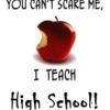 mockingbirdq: (teach)