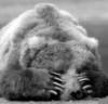 balu: (Sadness)