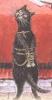 ctype: кіт (кіт)
