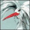 fandaal: (bird)