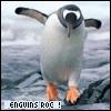 collacentaur: (penguin)