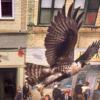 nexus_resident_morpher: (flying falcon)