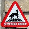 4ornobile: (знак)