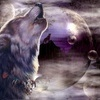 fivetimesdead: (волк)