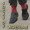 enviropony: (socks of awesome, buck davidson)