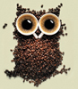 flying_falcon: coffee owl (coffee)