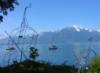 algumascoisas: (Montreux)