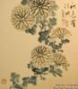algumascoisas: (chrysantemium)