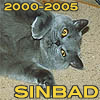 """turlough: Sinbad showing his tummy with the text """"Sinbad 2000-2005"""" in yellow ((other) sinbad)"""