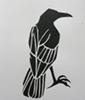corvi: (crow, papercut) (Default)