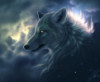 writteninthestarz: (wolf stars)