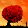 cognated: (Apple tree)