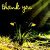 lijahlover: Thank you icon (Thank you)