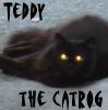 baranduin: (teddy the catrog)