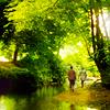 autumnal: (your eden)