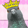 sunnymodffa: I'm the coo coo king of the world! (party pigeon)