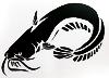 katherine: Whiskery catfish, papercutting of dark paper with cream background (catfish papercut)