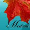 medeine: Red maple leaf on aqua, reading Medeine (Default)
