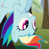 paxpinnae: Rainbow Dash, hanging out (and down). (friendship is magic)