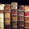 tamarinne: (books)