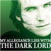 lordhellebore: (voldemort)