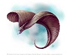 metemmonsters: (Flying Snake)