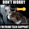 mellowtigger: (tech support)