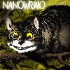 cheklovsgun: (Nano Cheshire)