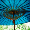 leavesofgold: (parasol by girlyb_icons)