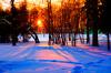 biancoloto: (Inverno)