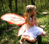 molly_elizabeth: Fairy (Default)