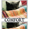 """sweet_sparrow: Icon of a cat snuggled under a blanket with the text """"Comfort"""". (R: Comfort)"""