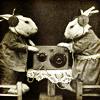 elmey: radio rabbits (wabbit)