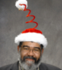 albear_garni: santa hat ()