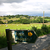 sproid: A 'public footpath' sign in front of a field of sheep, with cloudy skies above. (countryside)