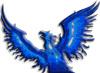 druidsfire: (Phoenix)