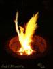 druidsfire: (Baby Phoenix)
