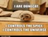 drivvenwrinth: Dune Cat (Dune Cat)