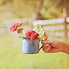 valeri_ta: (весна)