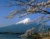 cosette_valjean: (Fuji)