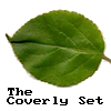 "sylleptic: An apple leaf with the text ""The Coverly Set"" (fandom; Arcadia)"