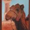 blueeowyn: (camel painting)