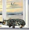 levkonoe: (кот на окне)