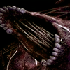 splitworm: (1)