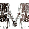 jesslove: (♫ skeleton you are my friend)
