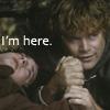 kaydeefalls: sam holding frodo's hand (my sympathies)